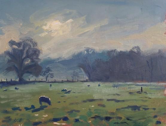 Winters Morning Light, Salisbury Meadows