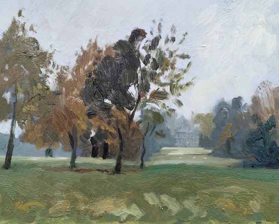 Impression of Badminton Parkland on a Cloudy Day