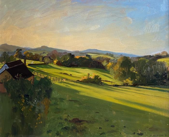 Golden Autumnal evening light over Somerset farmland